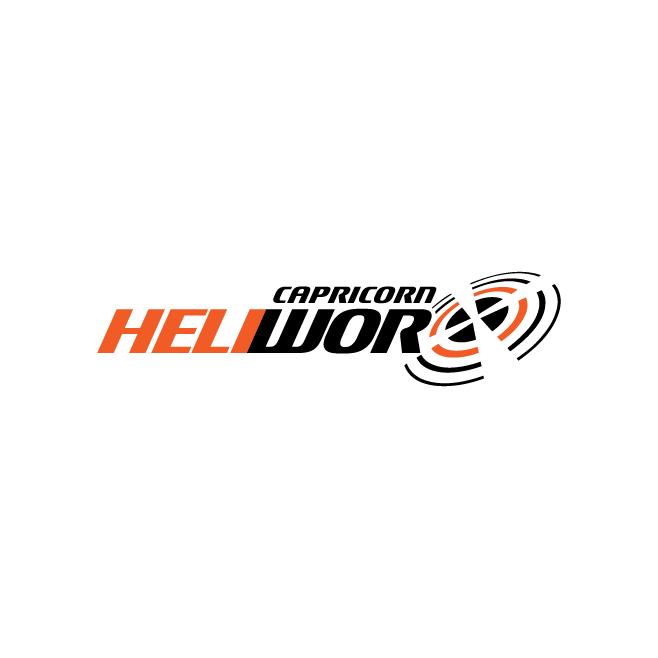 Capricorn Heliworx Emerald Business Logo Design | FMSTUDIOS