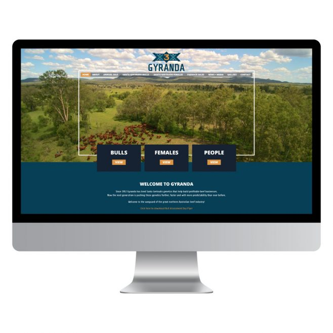 Gyranda Web Design | FMSTUDIOS