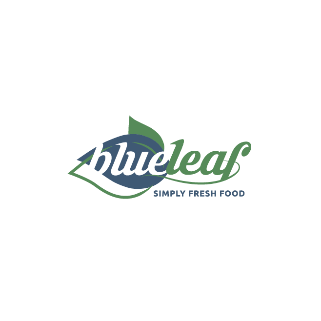 Blue Leaf Logo Design | FMSTUDIOS