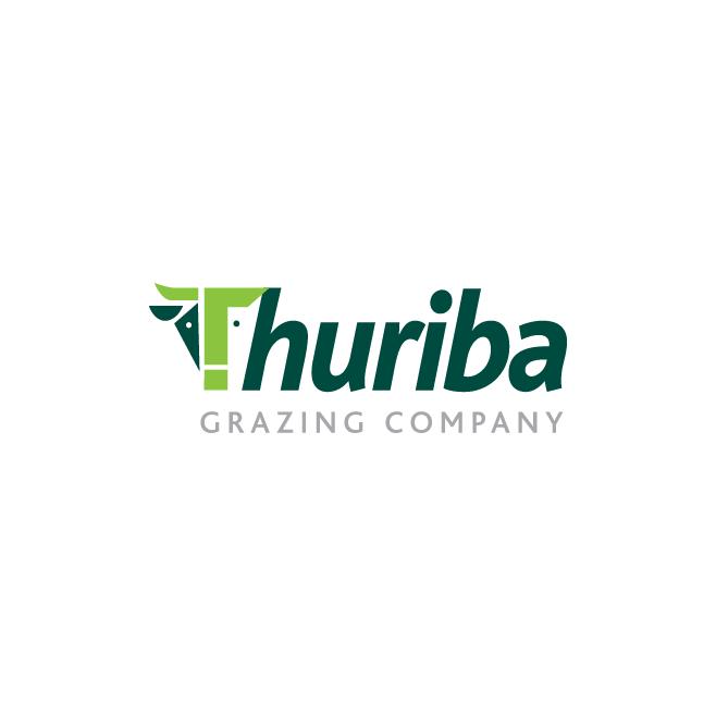 Thuriba Business Logo Design | FMSTUDIOS